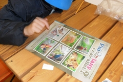 Nyári gyermekprogramok 11
